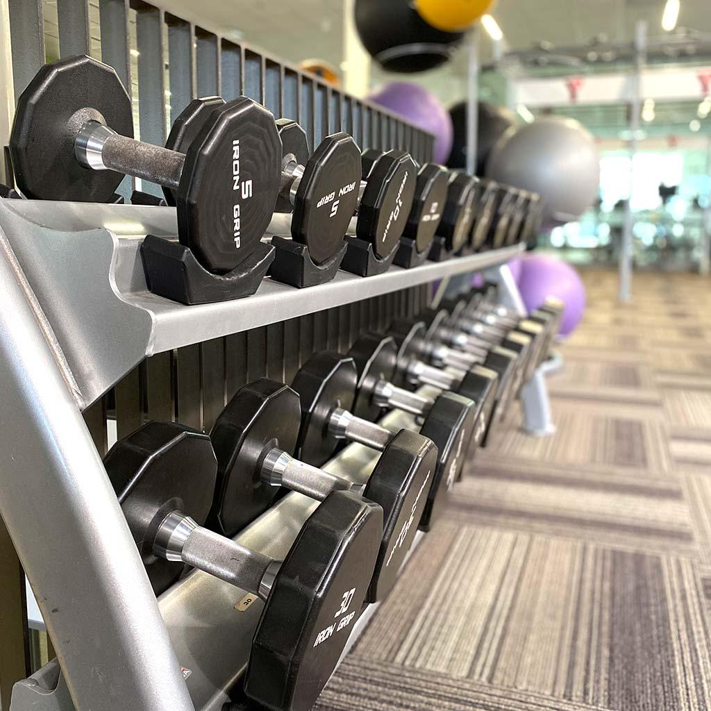 Weights in YMCA of Owen Sound Grey Bruce Health, Fitness & Aquatics facility